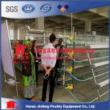 Projeto e venda profissionais da gaiola da galinha