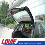 400mmの長さの金属車のトランクのための鋼鉄材料が付いている平らなアイレットガスばね