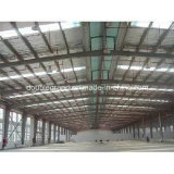 Steel chiaro Structure Warehouse/Steel Structure Building per Srorage