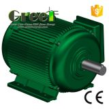 AC Brushless Fase 3 5kw 150rpm Permanente Synchrone Generator van de Magneet