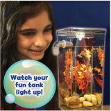 Meu tanque da limpeza dos peixes do divertimento