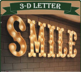 Signes d'ampoule de lettre de l'Aboutir-Lettre-Lampe DEL pour Wedding des vacances de Festiva