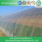 식물성 토마토 꽃을%s Mutil 경간 농업 플레스틱 필름 온실 공급자
