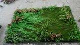 Piante di alta qualità e fiori artificiali della parete verde Gu-Wall9350611202122