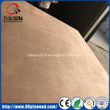 madera contrachapada Shuttering de la base del álamo de la cara de 18m m Okoume