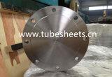 Personalizada de alta presión de acero inoxidable de tubo brida de la placa