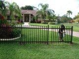 Bella rete fissa residenziale economica ornamentale del giardino