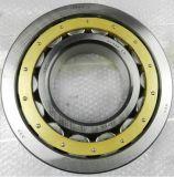 Rodamientos cilíndricos del rodamiento de rodillos de la fábrica de Nu332 SKF/NTN/NSK//China SKF