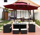 屋外現代庭の家具の藤