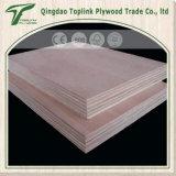 Facotry de venta directamente de abedul Ante álamo contrachapado Core / Comercial Chapas de madera / muebles Ply