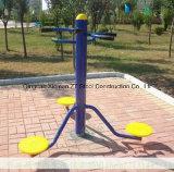 Guarniciones ligeras al aire libre para el edificio de carrocería para los adultos y los niños en parque con bajo costo