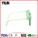 La coutume surdimensionnée en plastique possèdent les lunettes de soleil unisexes transparentes de marque (YJ-2013)