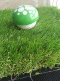 يرتّب عشب اصطناعيّة لأنّ زخرفة بيتيّة وزخرفة داخليّ خارجيّة