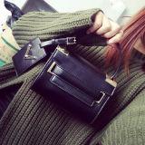 Hl1601. Borse del sacchetto di spalla del sacchetto del progettista del sacchetto delle donne della borsa di modo della borsa delle signore di sacchetto dell'unità di elaborazione