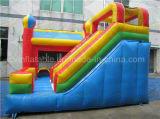 Principessa Inflatable Castle, Bouncer di salto con la grande trasparenza combinata