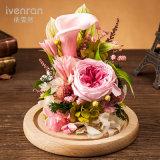 Flor preservada para el regalo de cumpleaños de la tarjeta del día de San Valentín