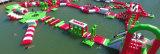 2017 het Nieuwste Drijvende Park van de Sport van het Spel van het Water van de Apparatuur van het Water voor Overzees