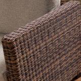 자연적인 등나무 가구 정원, 안뜰, 호텔 007-2c를 위한 Hand-Knitted 고리버들 세공 2 시트 소파