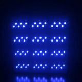 L'alto potere 864W LED si sviluppa chiaro per sviluppo di pianta (Nettuno 12 serie)