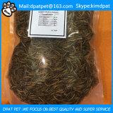 Hohe Nahrung getrocknete Mehlworm-Fisch-Nahrungsmittelreptil-Nahrung