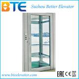 강철 구조물을%s 가진 세륨 Mrl Vvvf 유리벽 홈 엘리베이터