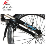 """"""" marco de la aleación de aluminio 26 con la E-Bici de Shimano 250W (JSL038G-4)"""