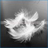 Gewaschene weiße oder graue Gans-Ente-Feder