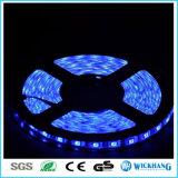 luz de tira no impermeable de los 5m RGB 5050 LED SMD 30 LED/M