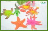 بالجملة أطفال لعب نمو هبة حيوان سحريّة ينمو لعب ماء لعب