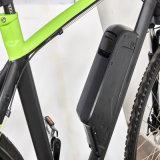 36V 250W Montaña MID conducción eléctrica de la bici