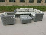 Rattan rotondo 6 parti della mobilia esterna di vimini del sofà sezionale