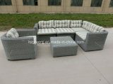 Rota redonda 6 pedazos de los muebles al aire libre de mimbre del sofá seccional