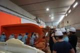 Solas тип прибор Davit запуская с системой компенсации волны для спасательной лодки