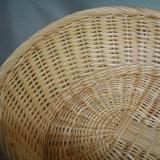 고품질 Handmade 자연적인 버드나무 바구니 (BC-ST1259)