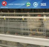 Cage de couche de batterie de rangée des matériaux 3&4 de ferme