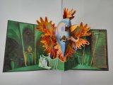 El libro 3D de la educación de la impresión en offset surge el libro para el aprendizaje de Instereting