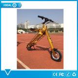 Peso leggero che piega la bici elettrica pieghevole della bicicletta elettrica