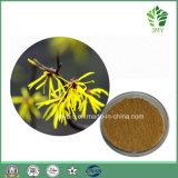 Reines natürliches kosmetisches Bestandteil-Hexe-Haselnuss-Auszug-Puder 10% Hamamelitannin