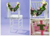 Silla transparente al aire libre moderna de la resina de la boda