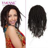 Perruque brésilienne de lacet de cheveux humains de qualité