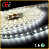 DC12V / 24V Ce approuvé Flexible LED Strip Light LED Strip Lamp