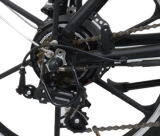 Rueda entera plegable la bicicleta eléctrica (TDN01-3)
