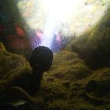 3000 Lumen 25W 3X CREE Xml U2 LED wasserdichtes LED grelles Unterwasserlicht der Taucher-Fackel-Taschenlampen-100m + Batterie 2*32650 + Aufladeeinheit