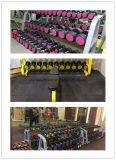 Dumbbell rivestito di gomma di G/Fixed (FW-101)