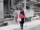 Hot Sale Hammer Mill Crusher / Hammer Mill Price / European Hammer Crusher
