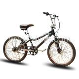 Vélos de montagne/MTB (WTB102003)