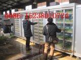 밀/보리 싹이 트기 기계/동물성 마초 기계 또는 녹색 마초 Machina (JXYJ-500M)