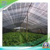 Redes plásticas da máscara de Sun da estufa para a agricultura