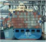 Agente de transporte de China