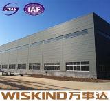 Хорошее здание стальной структуры самомоднейшей конструкции (wsdss309)